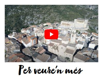 VideoOs.png